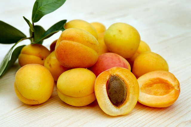 apricots safe for sugar gliders to eat