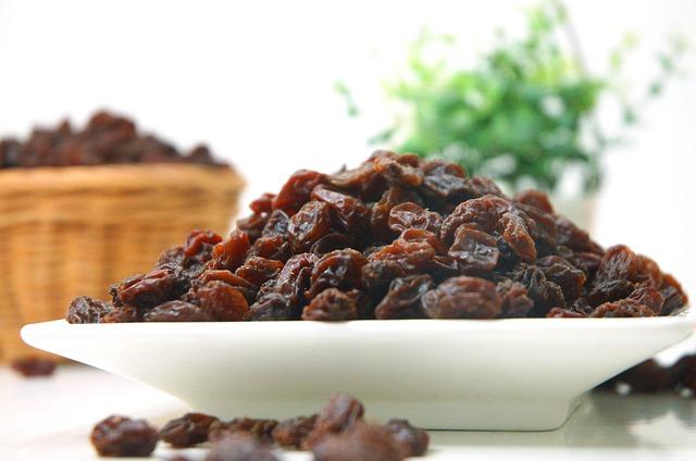 bowl of raisins for sugar gliders