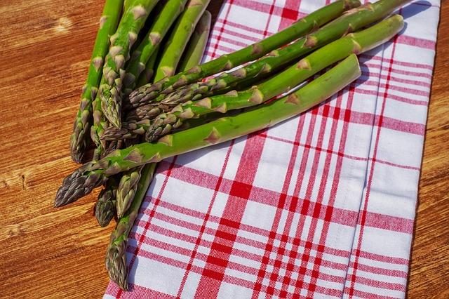 can sugar bears eat asparagus
