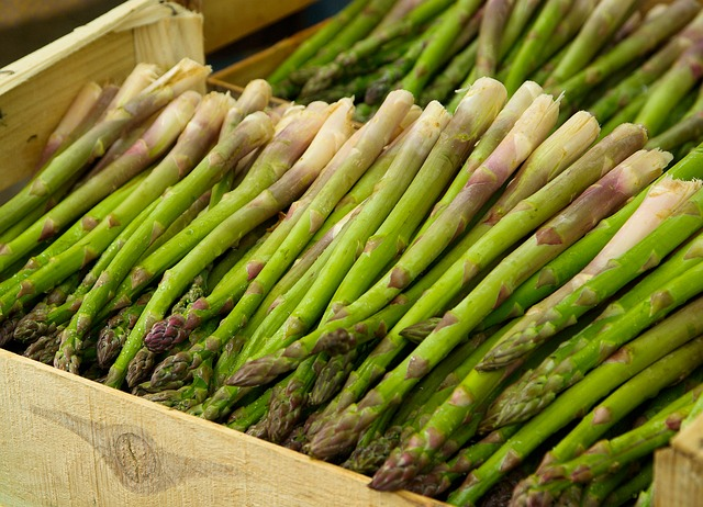 is asparagus healthy for sugar gliders