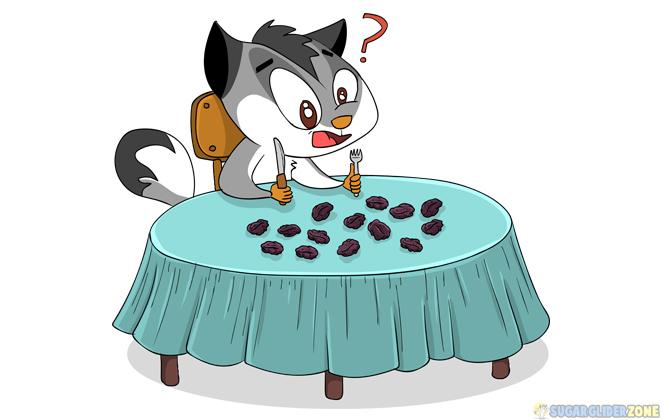 is raisins safe for sugar gliders