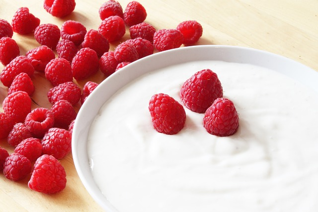 raspberries in yogurt healthy for sugar gliders