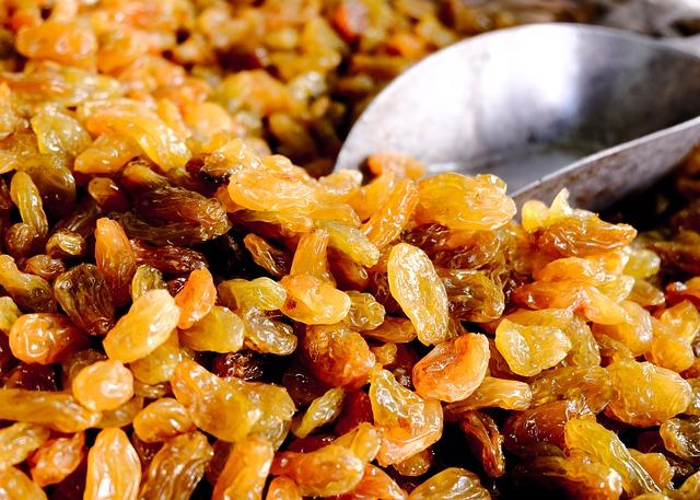 what kind of raisins can sugar gliders eat